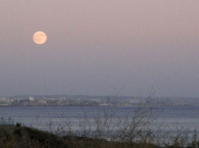 luna cascais